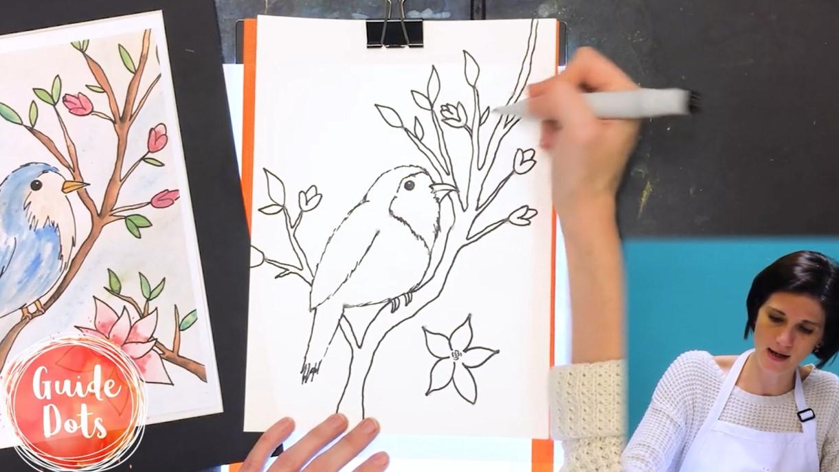 SpringbirdDraw